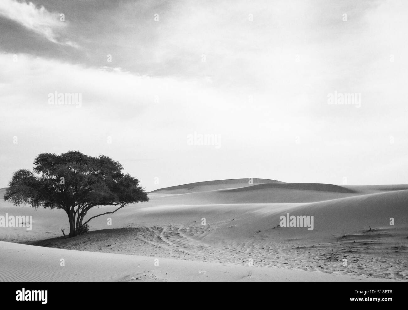 Loneliness contrasted - Stock Image