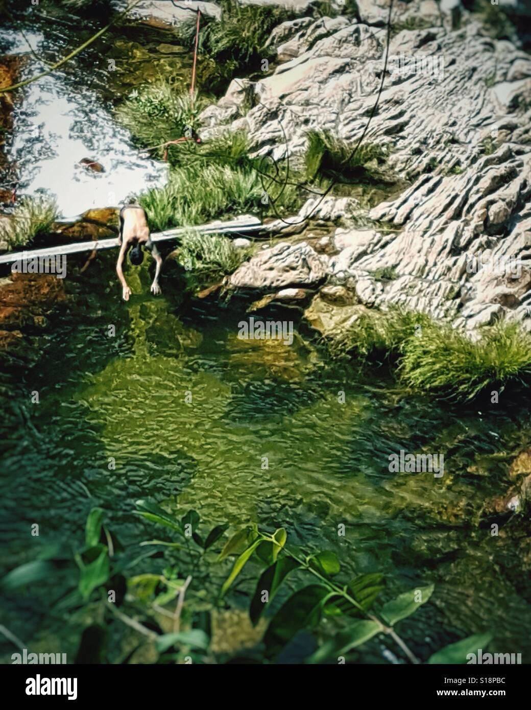 Man jumping on green natural pool at Chapada dos Veadeiros, Brazil. - Stock Image