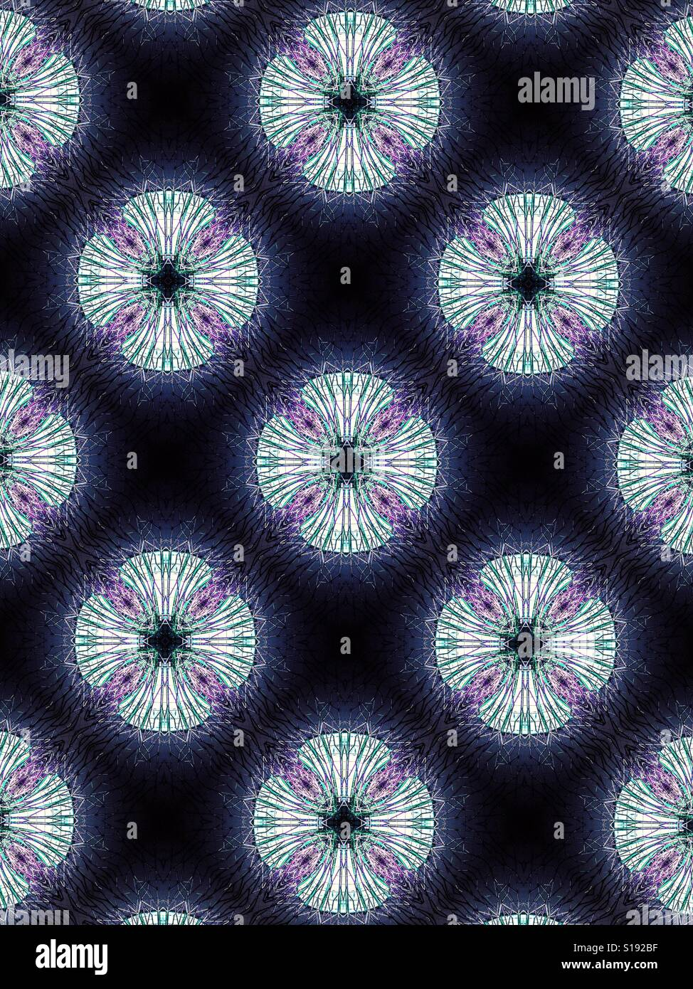 an abstract design featuring white floral starbursts on a purple