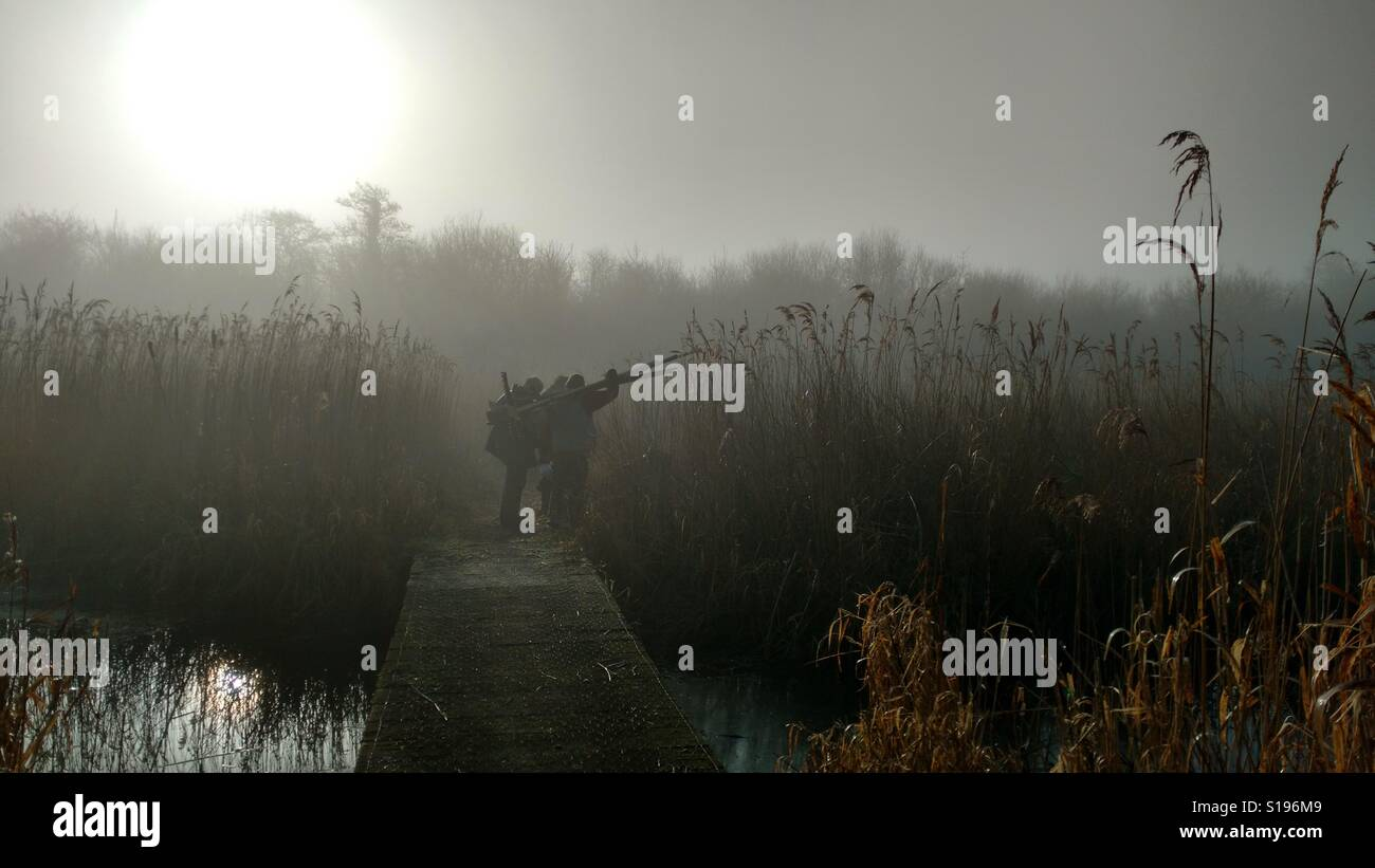 Early morning mist - Stock Image