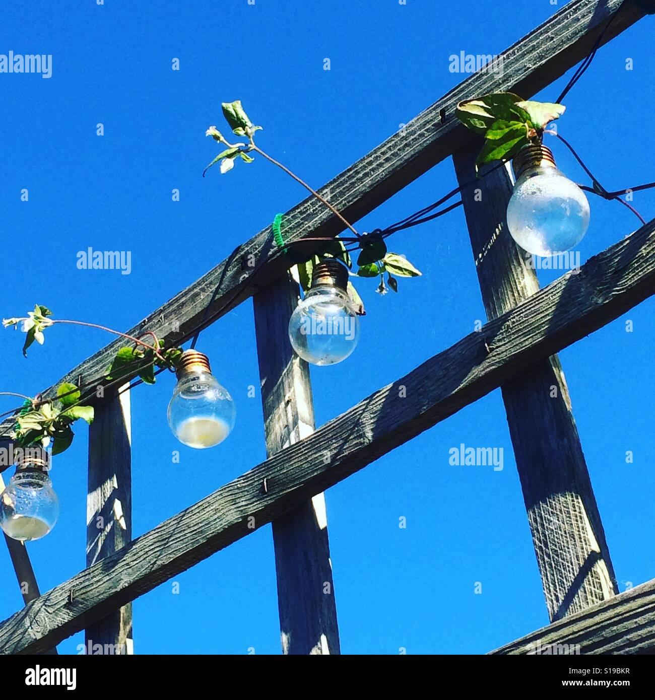 Garden lights - Stock Image