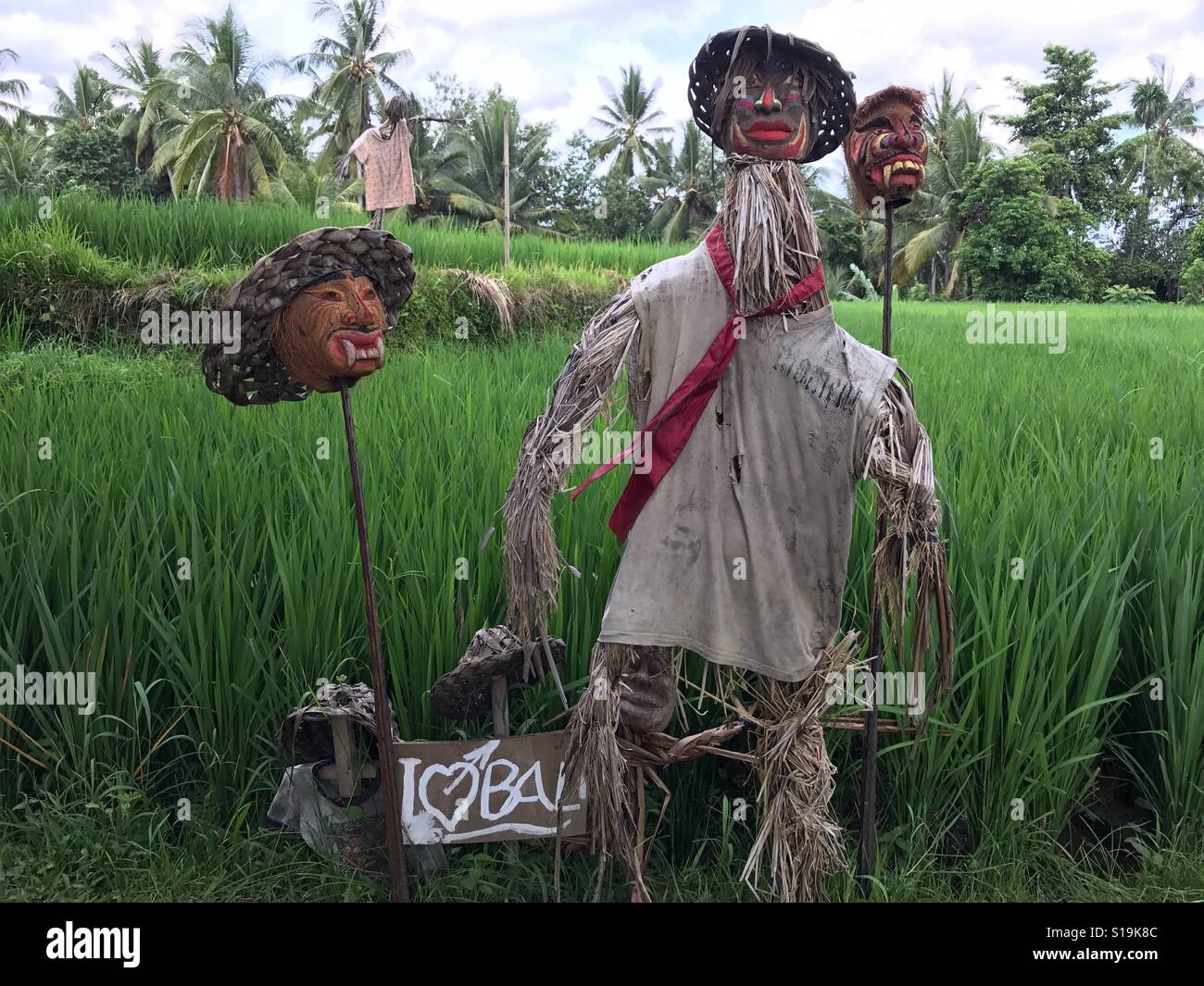 This scarecrow certainly lives up to its name, complete with mounted heads! Structure in the rice fields of Ubud - Stock Image