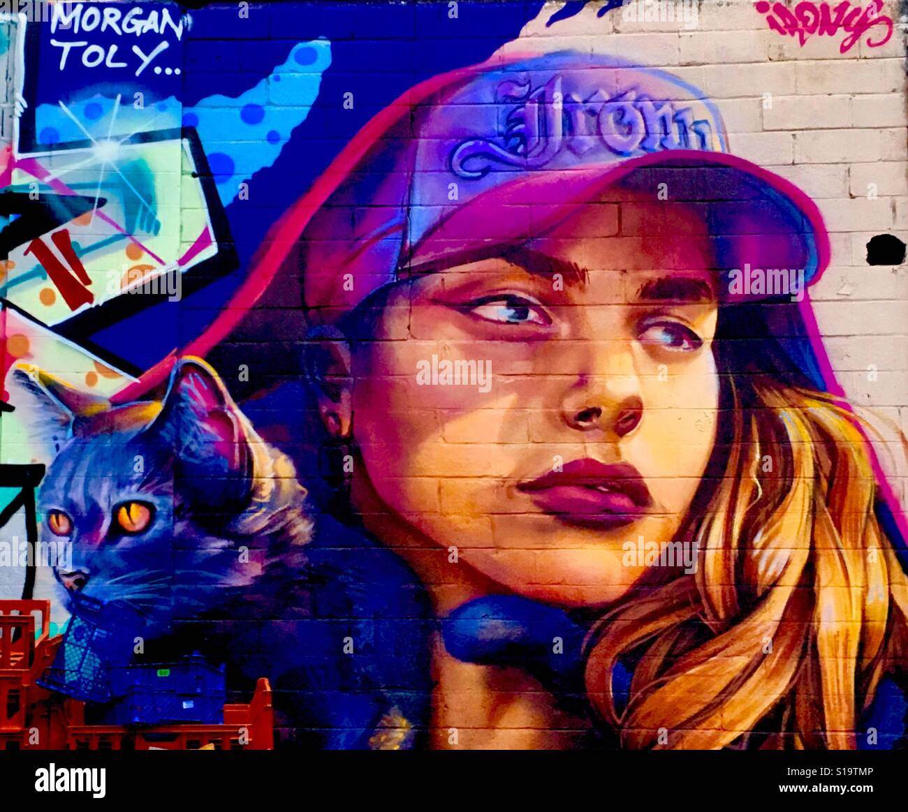 Young Women with Cat Street Art Tooting, London - Stock Image
