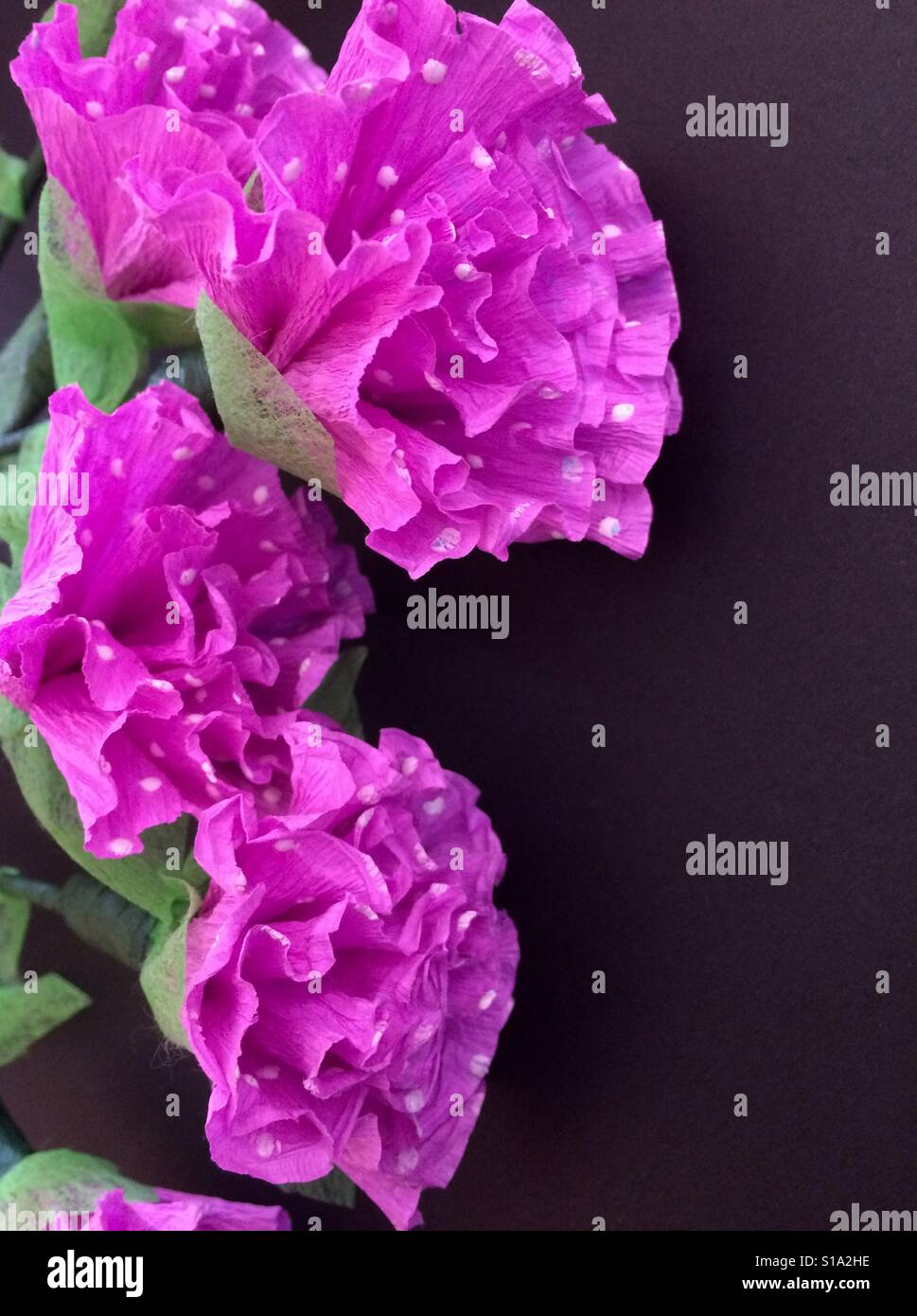 Tissue Paper Flowers Stock Photos Tissue Paper Flowers Stock