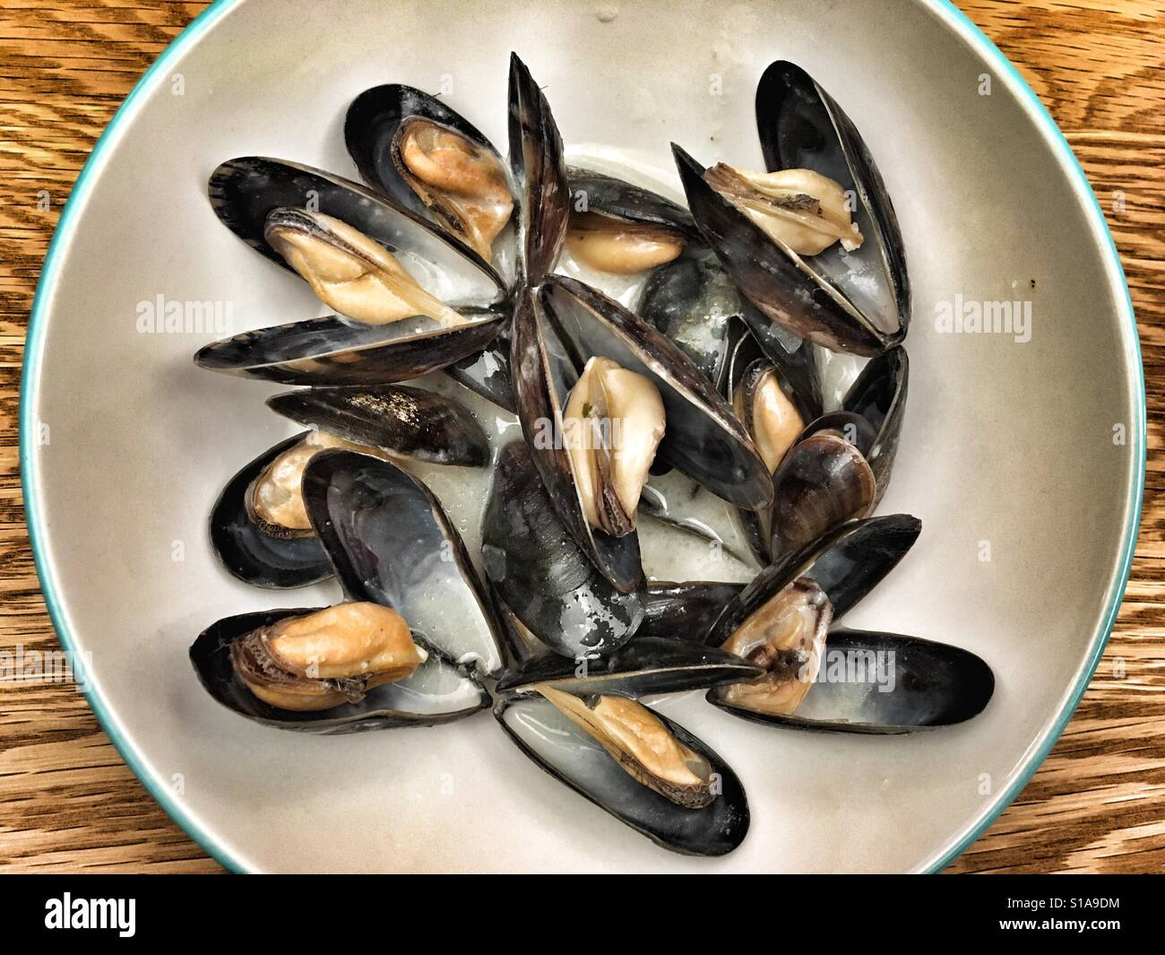 Mussels in white wine and cream sauce - Stock Image