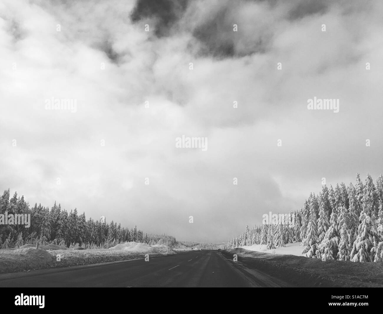 Black and white landscape of snowy mountain pass highway in Canada with evergreen trees - Stock Image