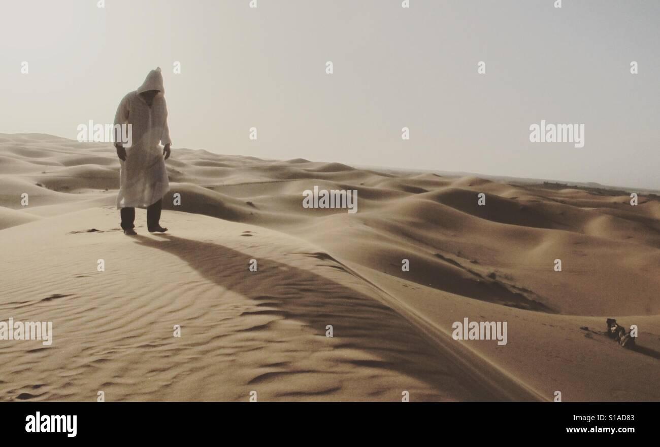 Wandering in the desert - Stock Image