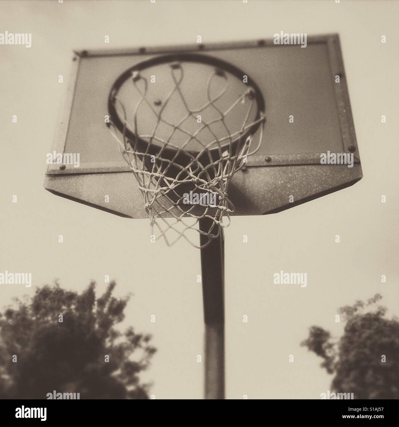 A basketball hoop in black and white - Stock Image