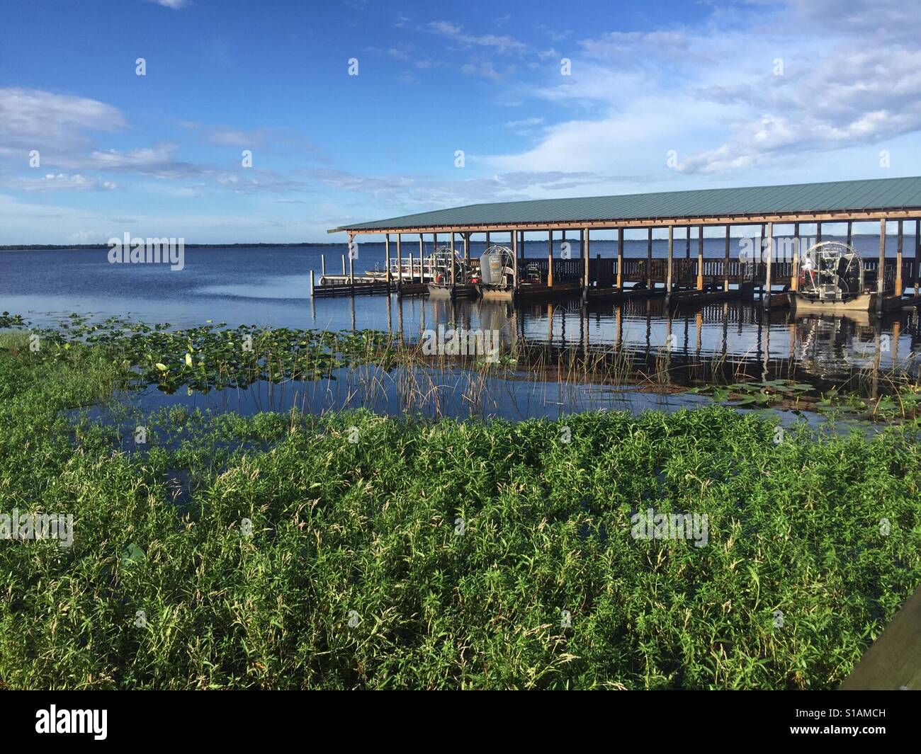 Florida Wildlife and Gator Park, Orlando - Stock Image