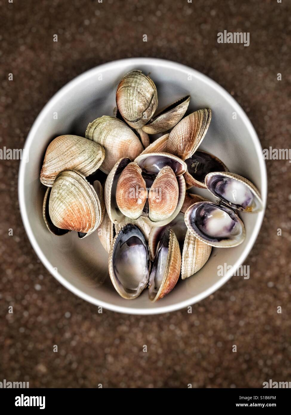 A bowl of empty clams shell, after a meal. - Stock Image