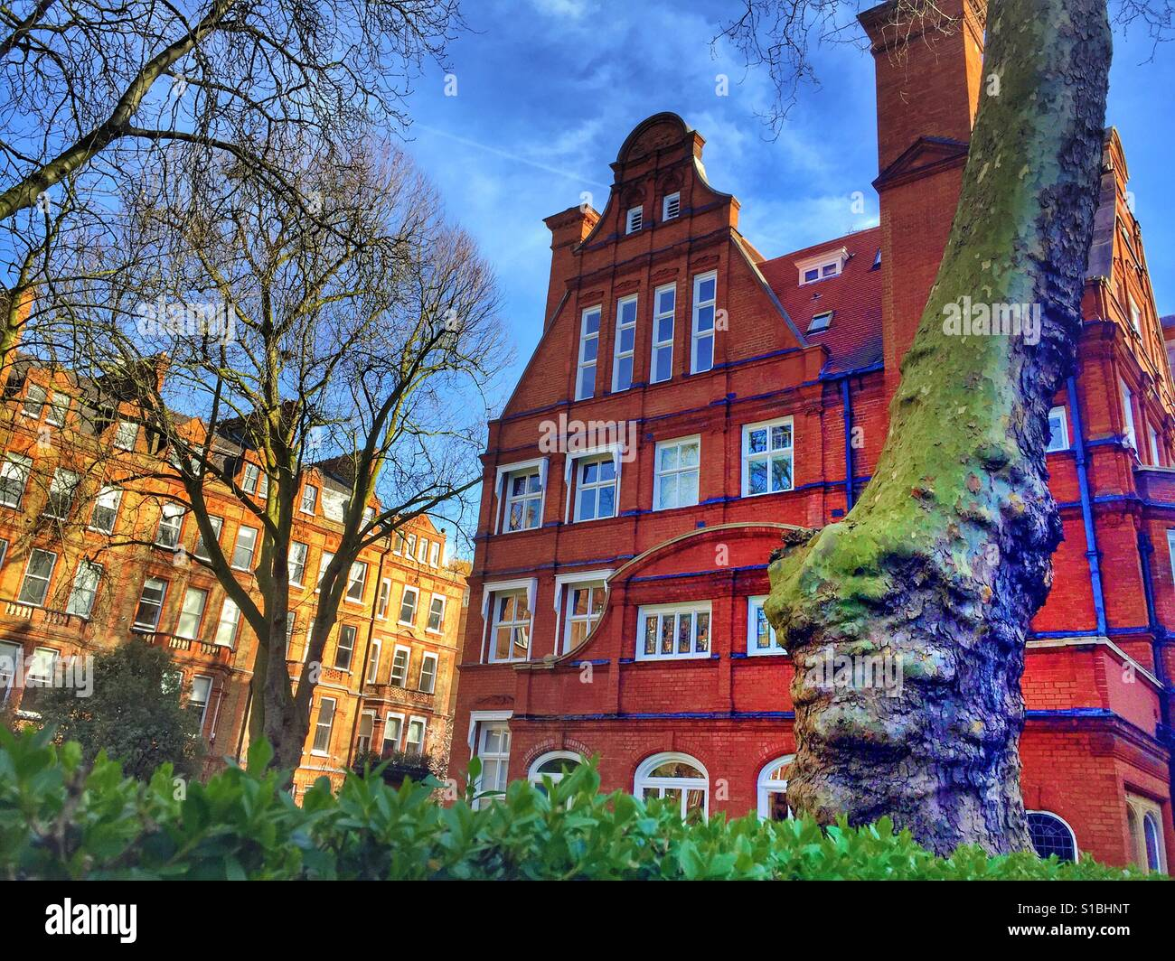 English House in London    Typical architecture red bricks trees - Stock Image