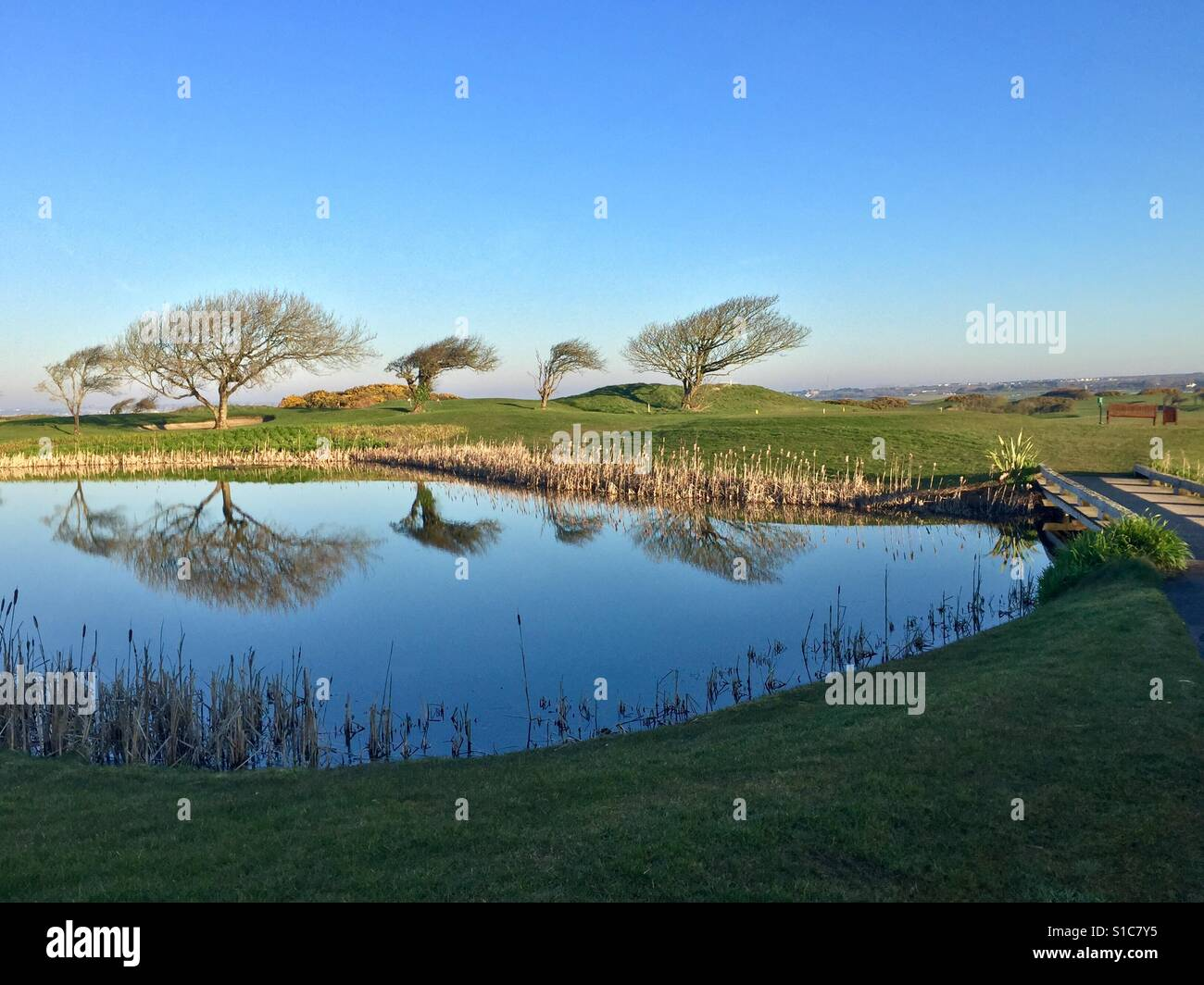 Reflections, Spring Morning in Ireland - Stock Image
