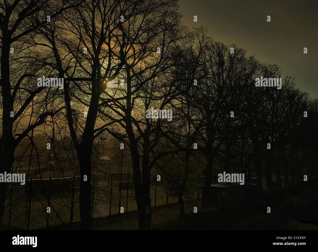 Early spring morning Stock Photo