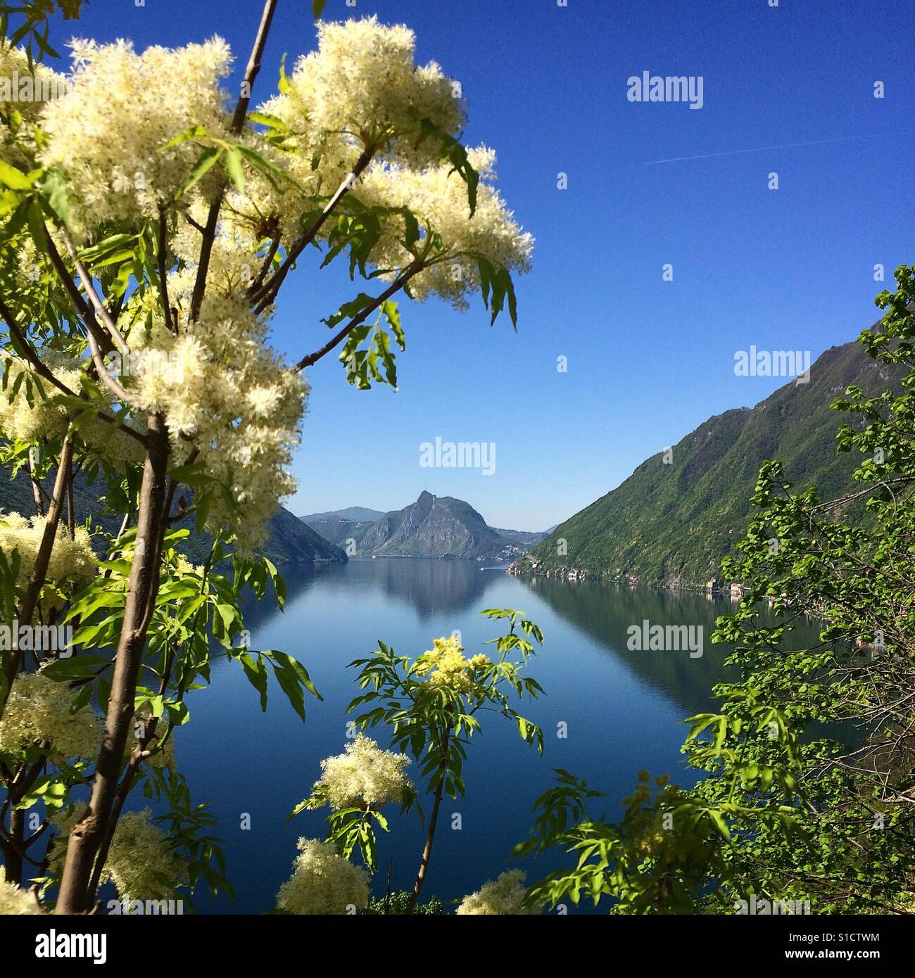Spring on the Lake - Stock Image