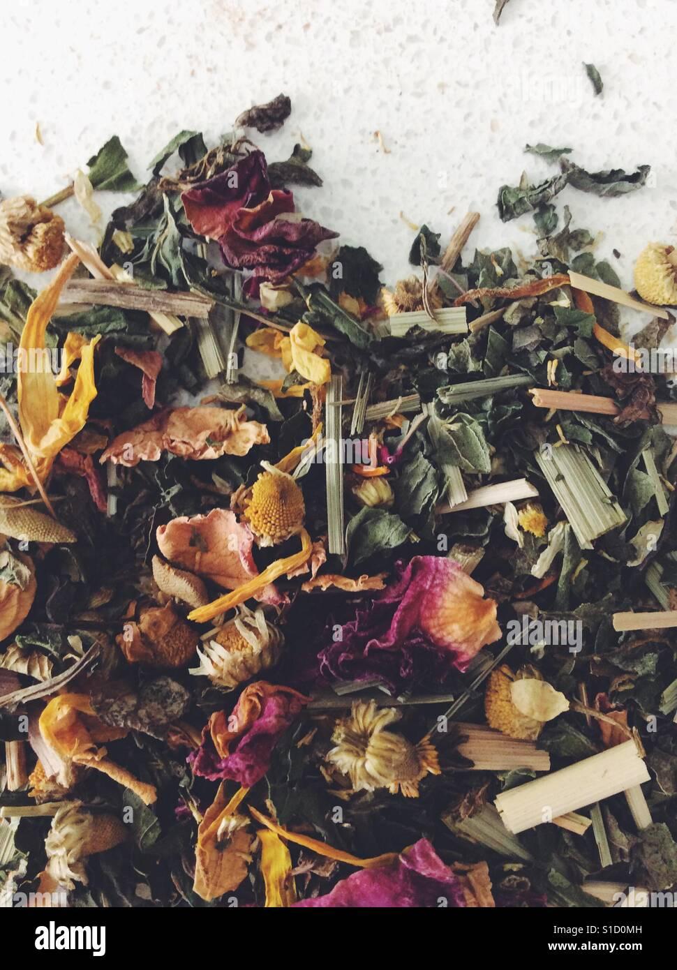 Floral detox tea - Stock Image