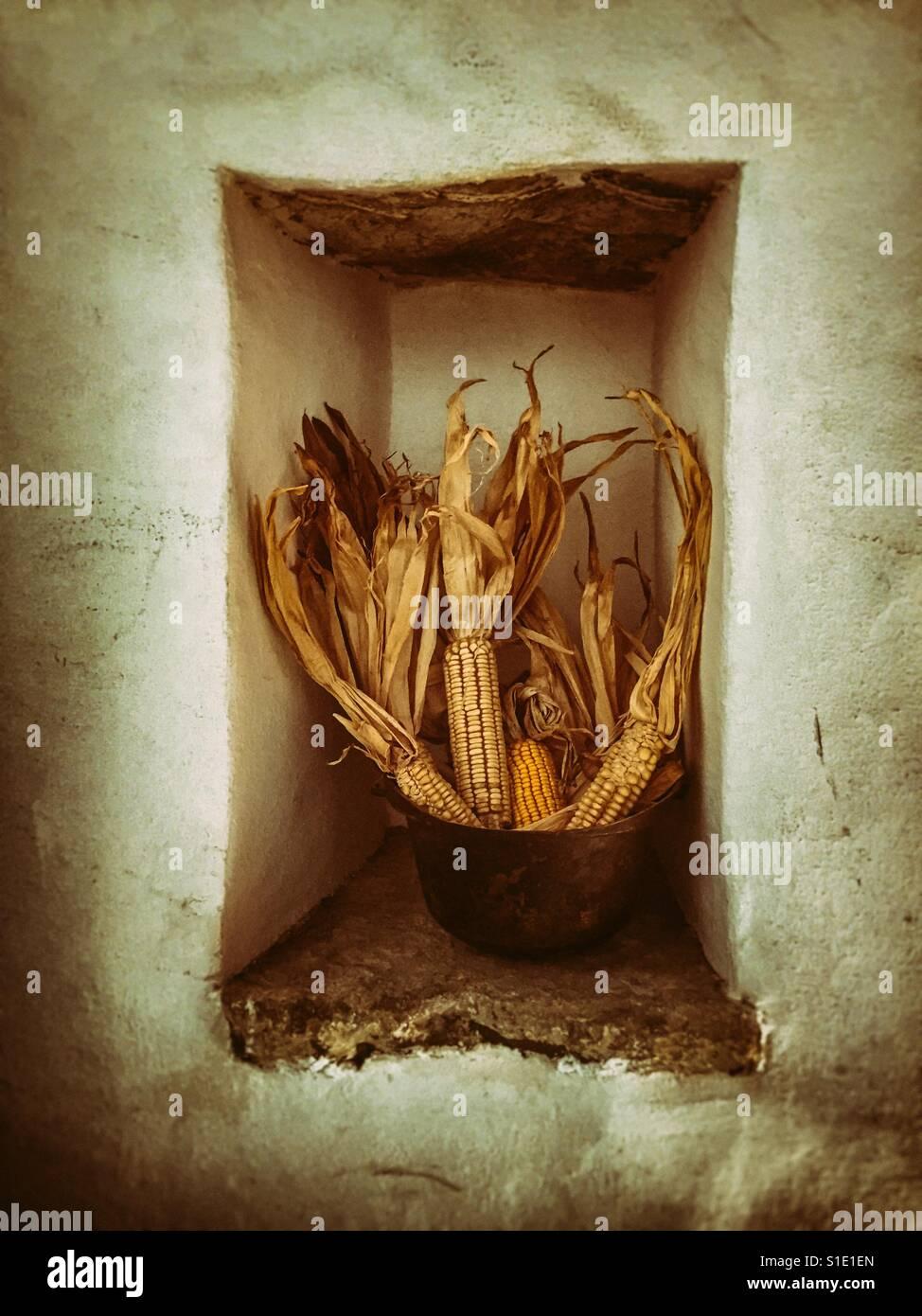Dried corn arrangement Stock Photo