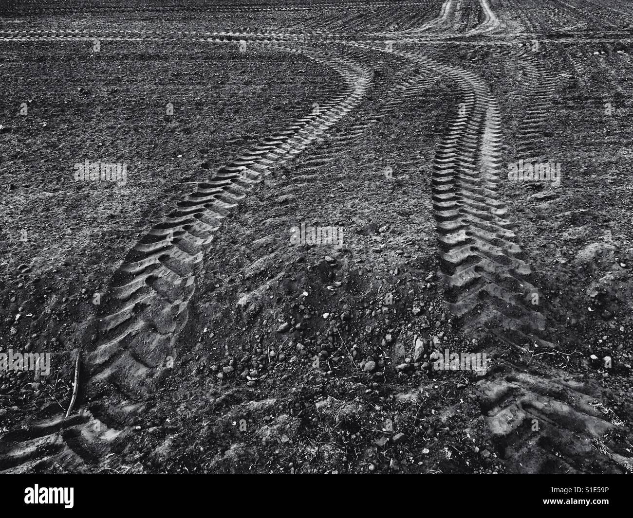 Tyre tracks - Stock Image