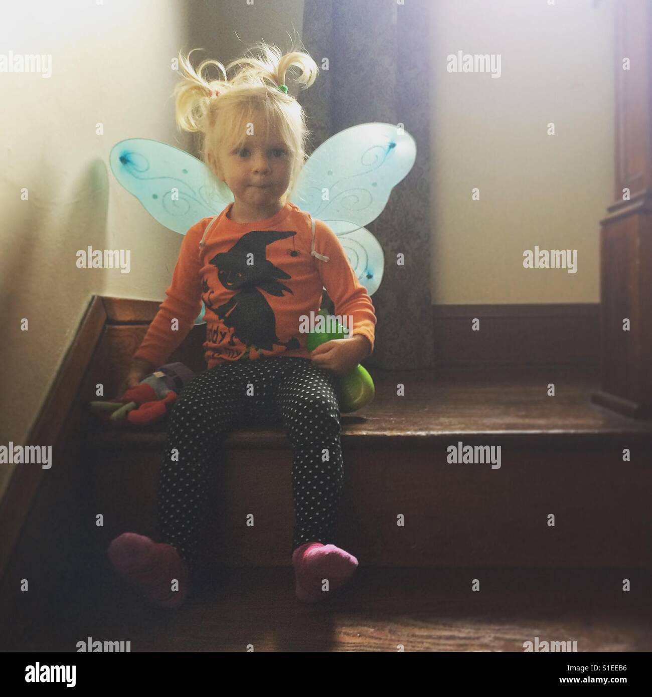 Little girl with pigtails and fairy wings - Stock Image