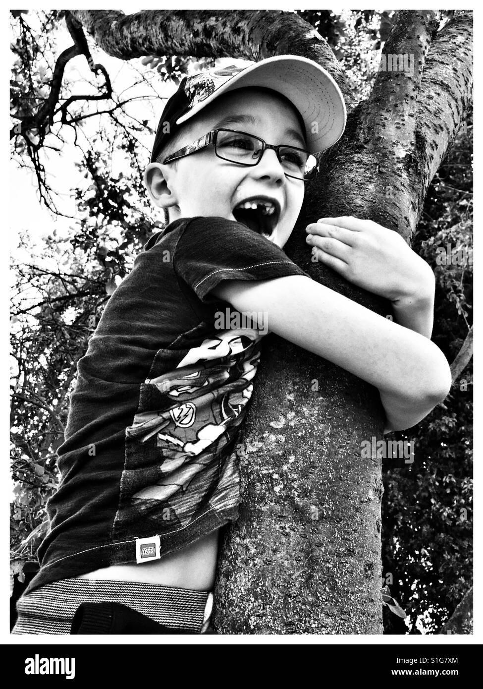 Boy stuck up a tree. - Stock Image