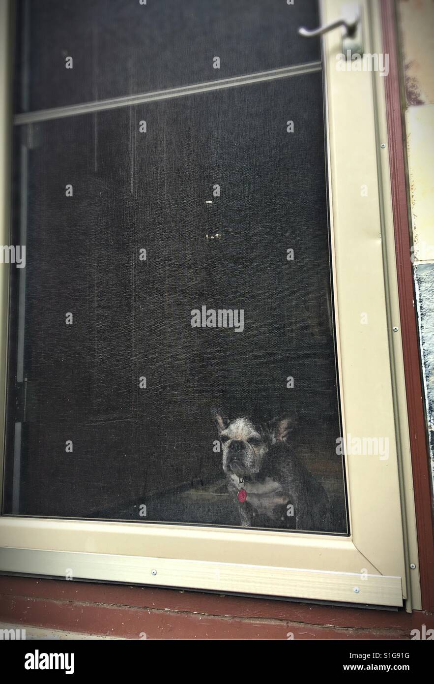 Screen Door Stock Photos Amp Screen Door Stock Images Alamy