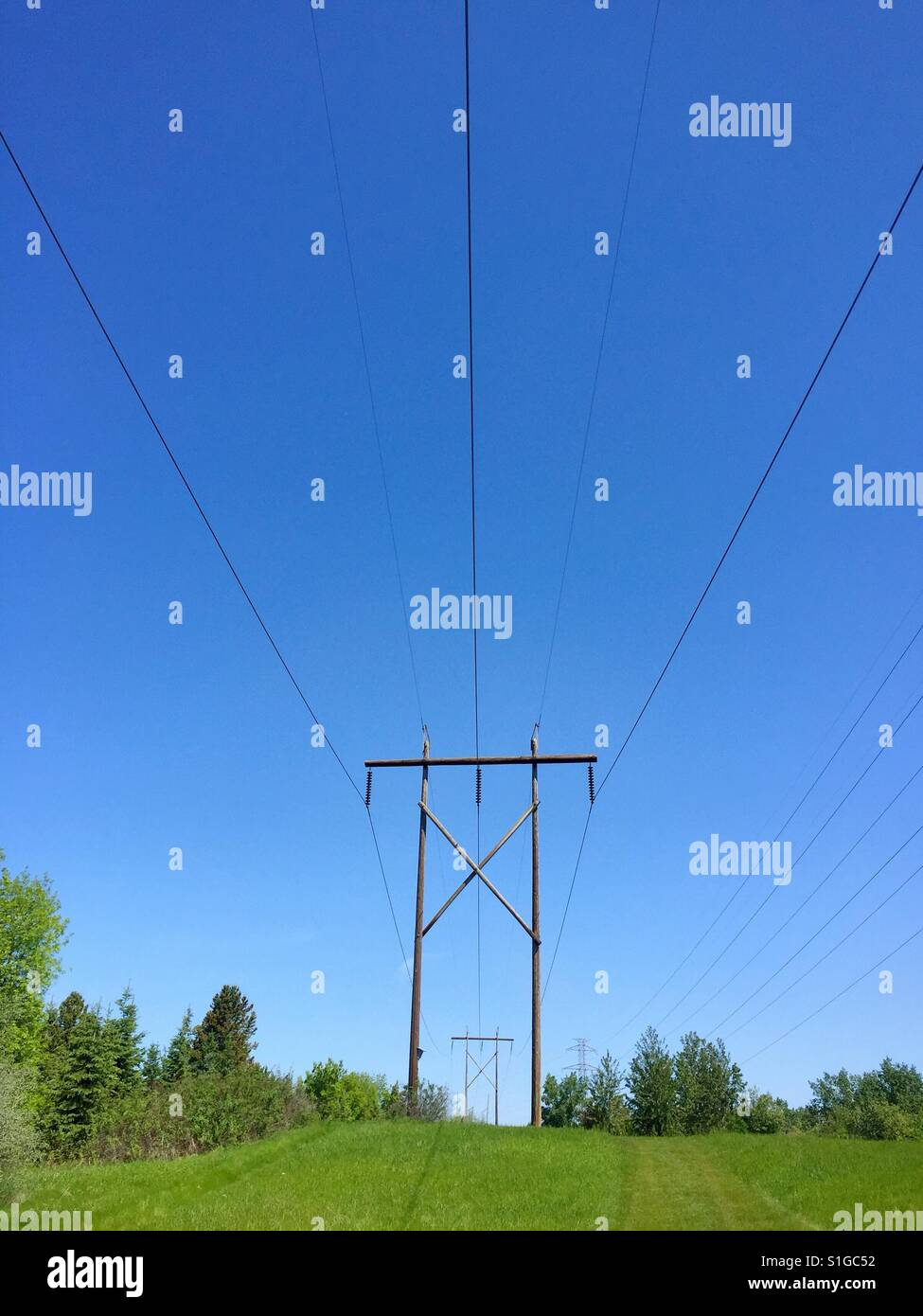 Simple photo of transmission or power lines in green field - Stock Image