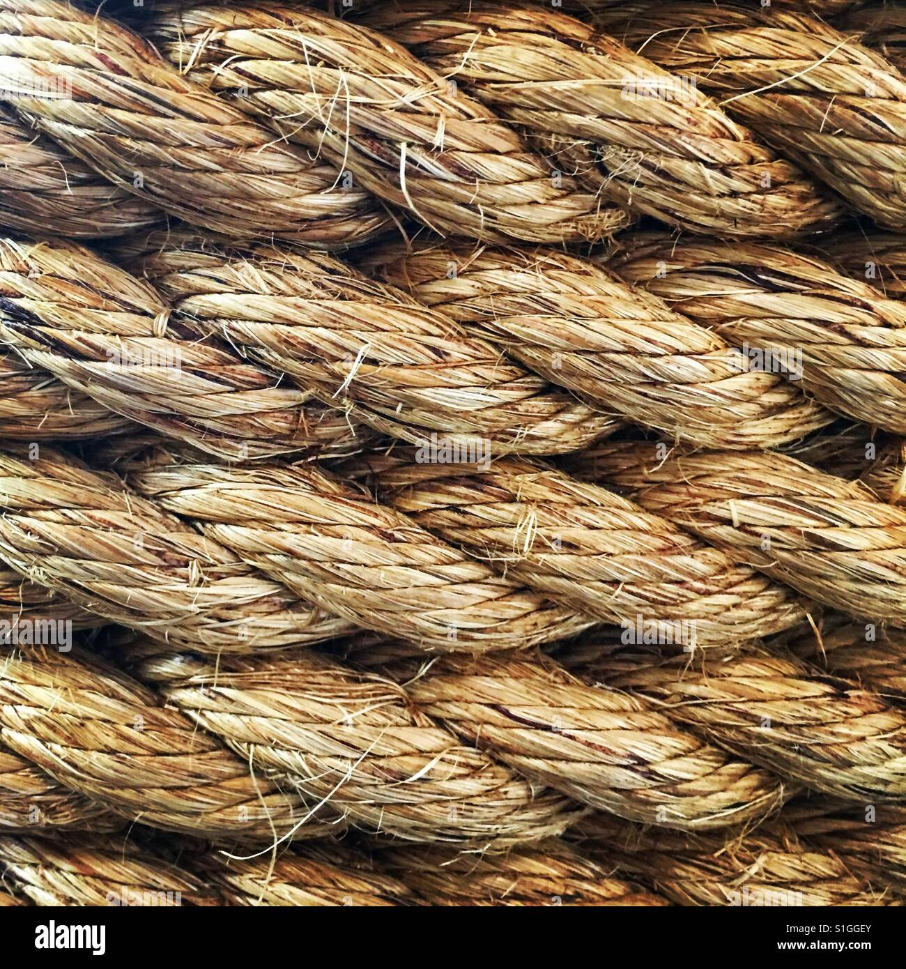 Close-up of coiled rope. - Stock Image