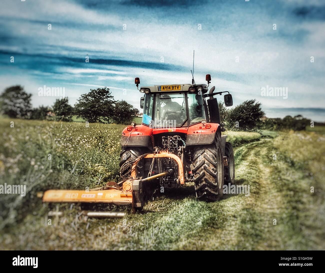 Farmer keeping a public footpath clear, Alderton, Suffolk, England. Stock Photo