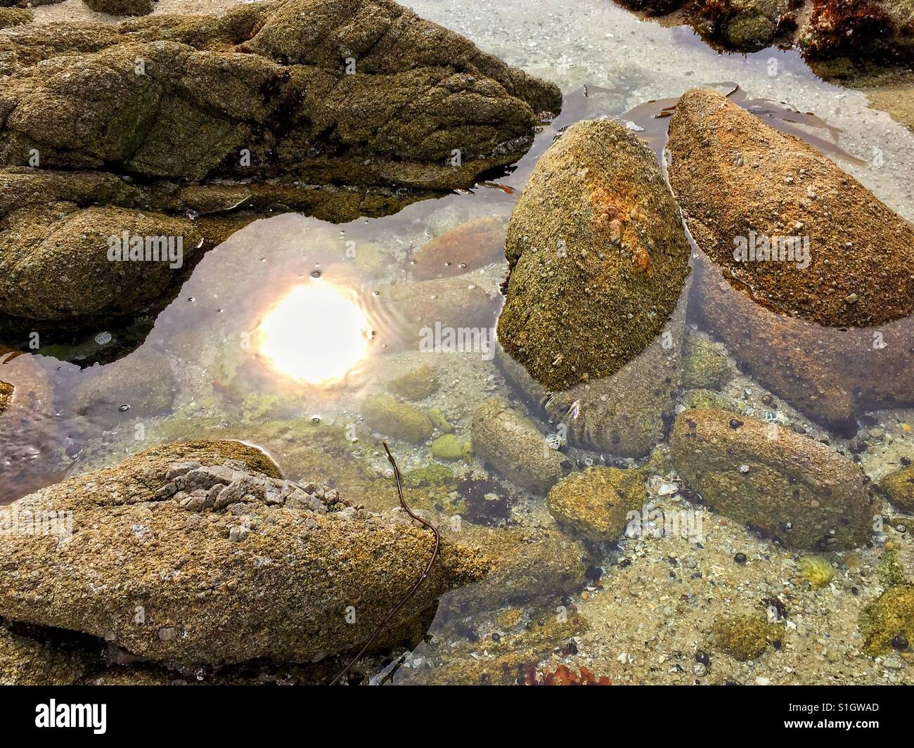 The reflection of the sun on the surface of sea water. - Stock Image