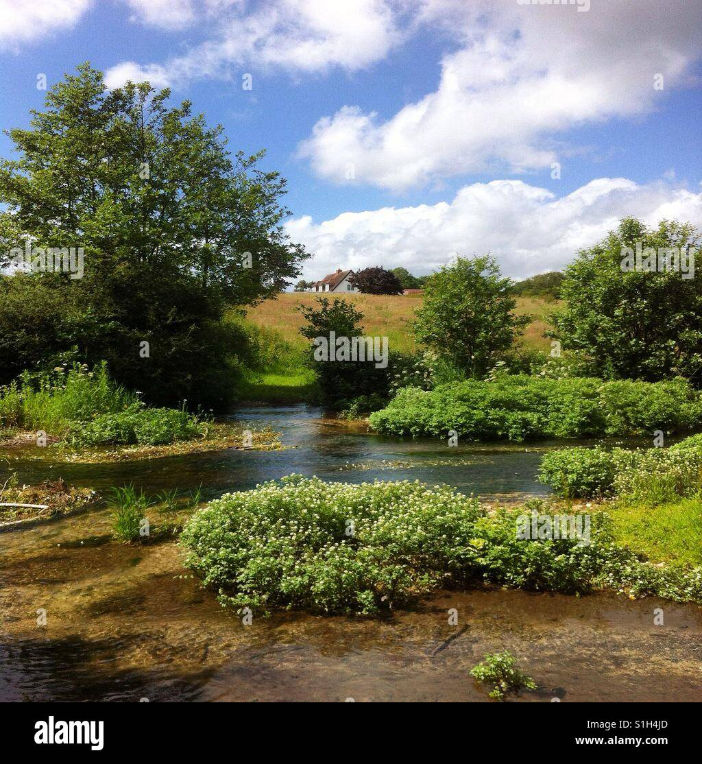 The River Meon - Stock Image