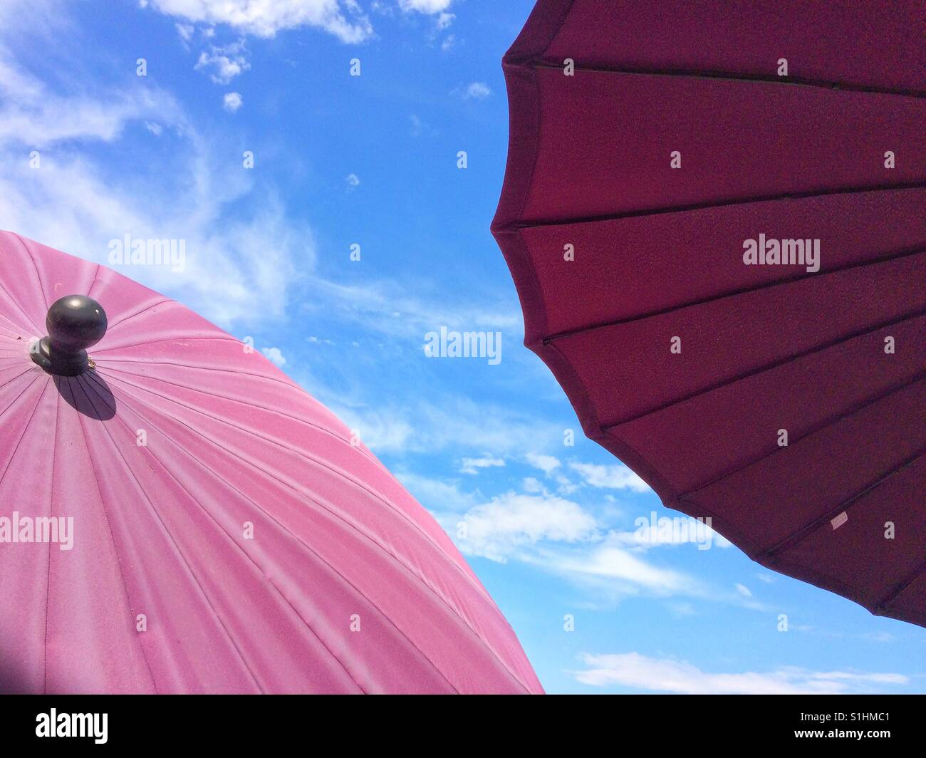 The underside and top of a pair of maroon parasols or umbrellas under a bright blue sky - Stock Image