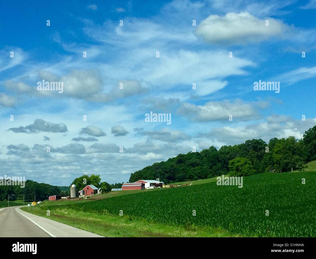 Minnesota Farm - Stock Image