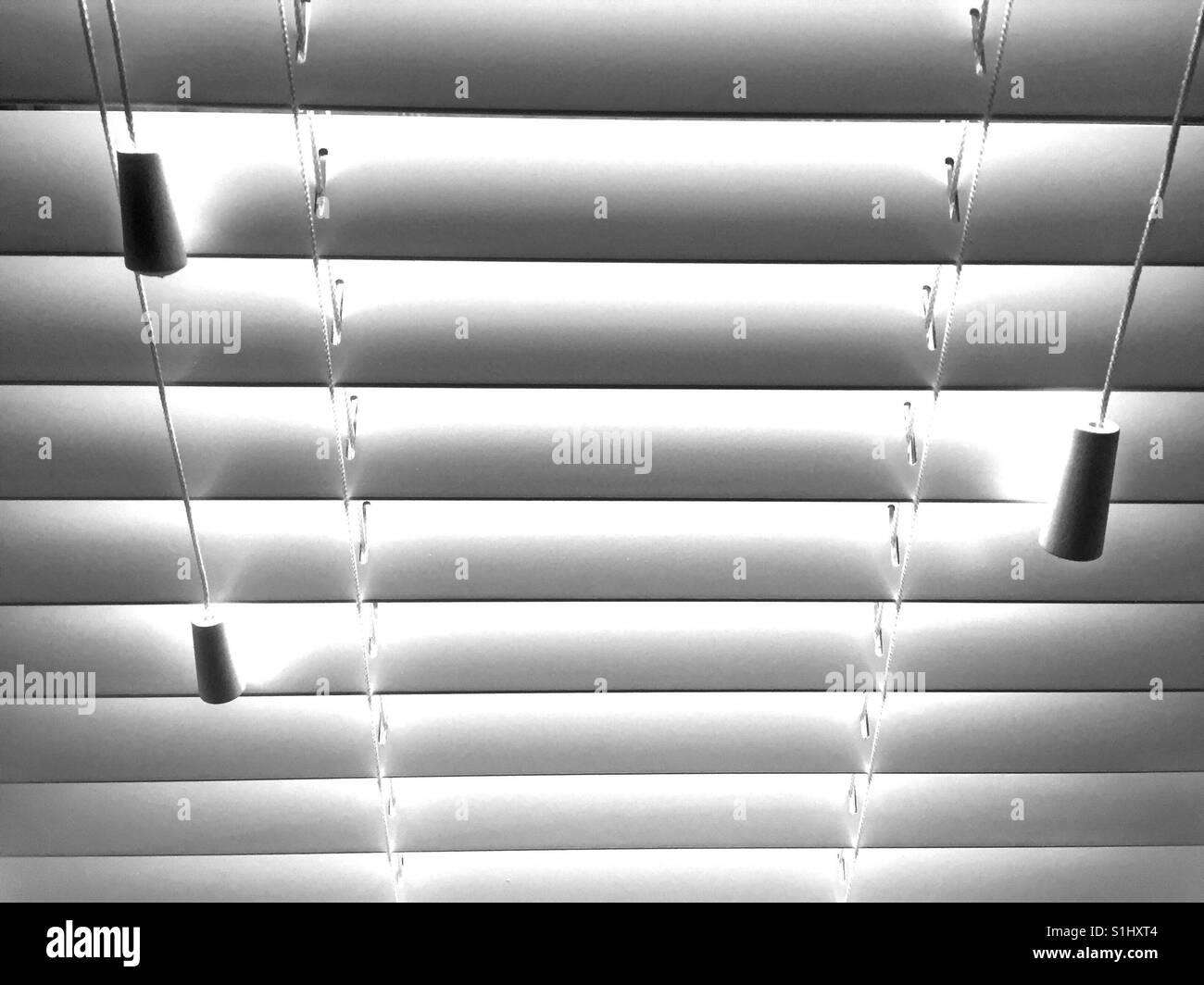Venetian blinds in the morning - Stock Image