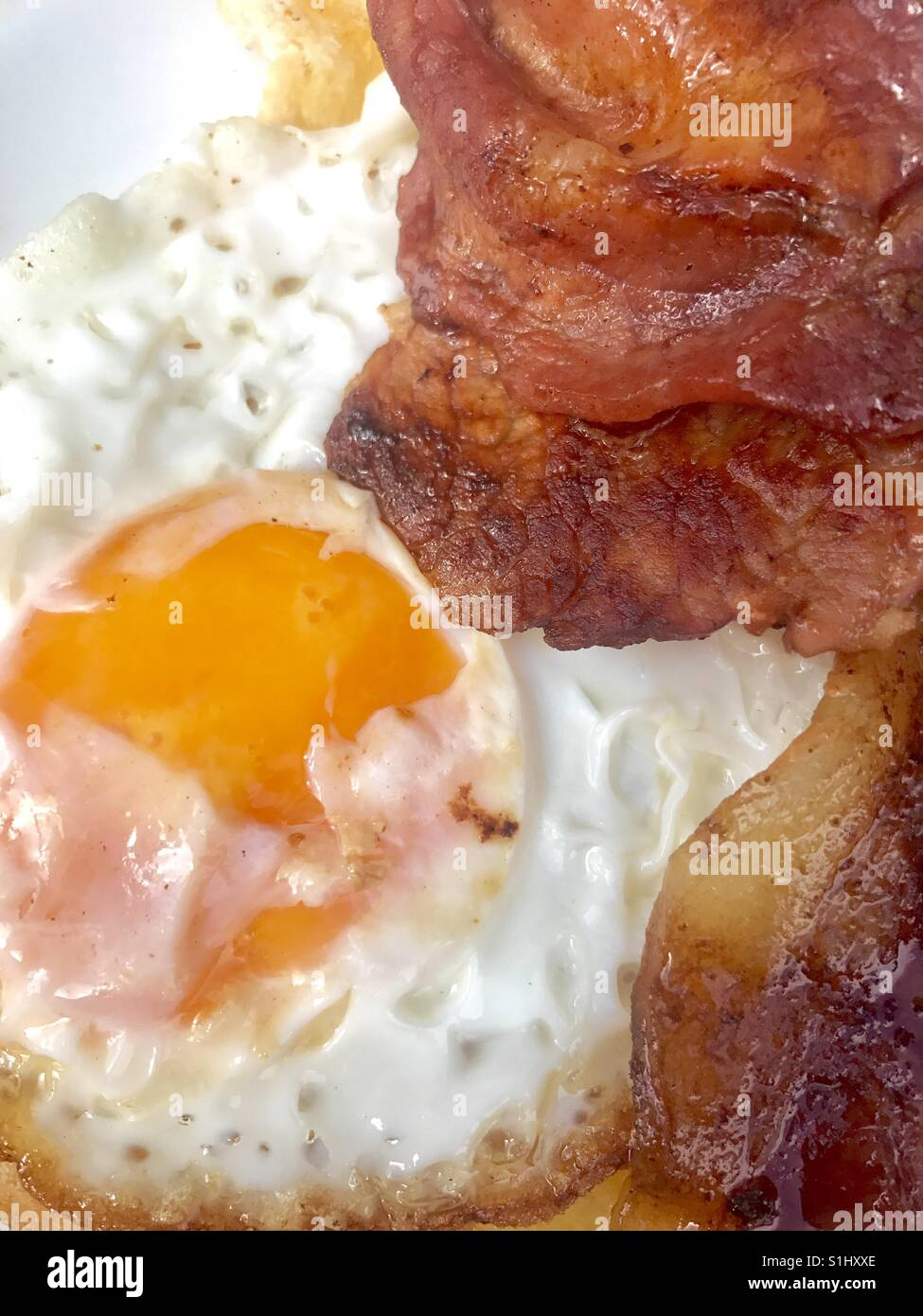 Fried egg and bacon - Stock Image