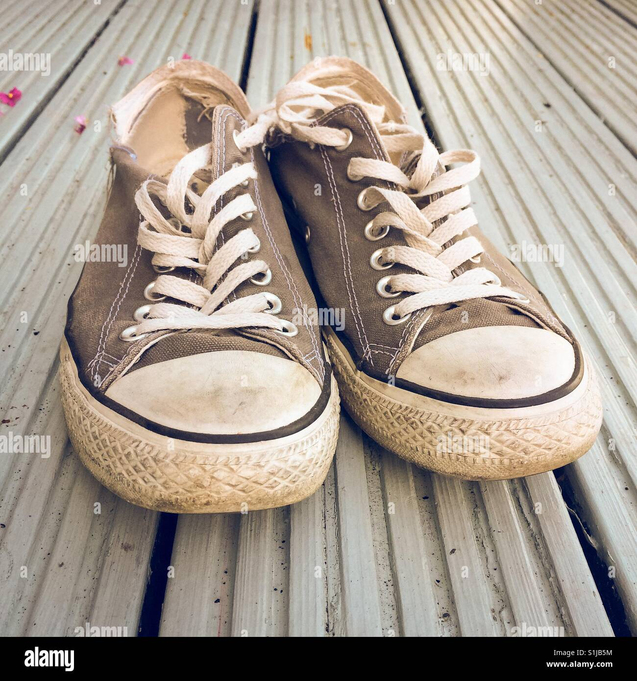 0037ddcfeb33 Grey Converse Trainers Stock Photos   Grey Converse Trainers Stock ...