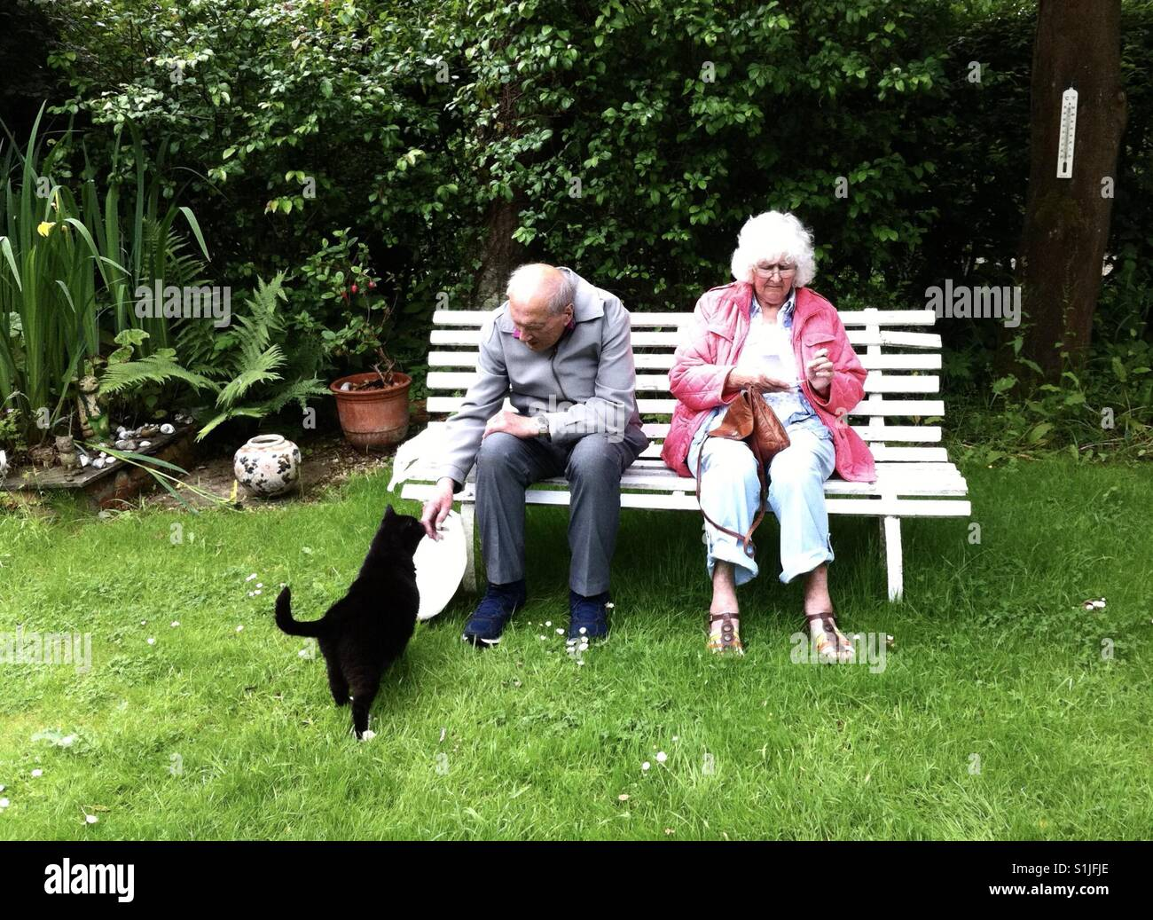 Stupendous An Elderly Couple Sat On A Garden Bench Are Approached By A Inzonedesignstudio Interior Chair Design Inzonedesignstudiocom