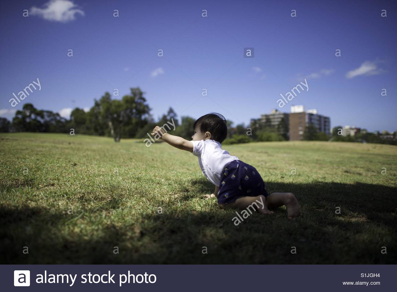 Reaching out - Stock Image
