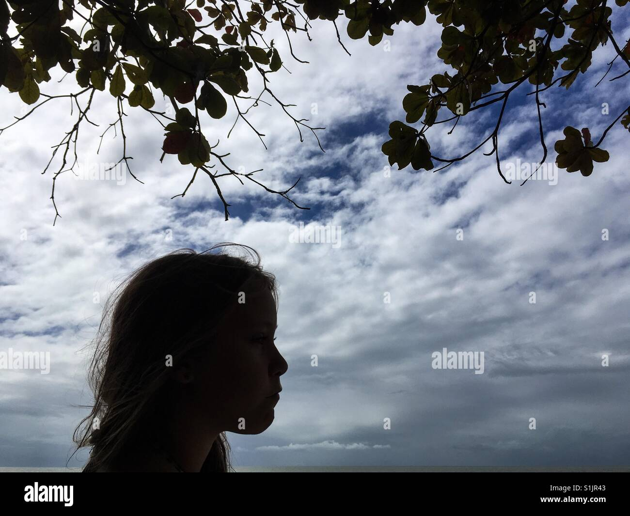 Silhouette of a pre-teen girl . - Stock Image