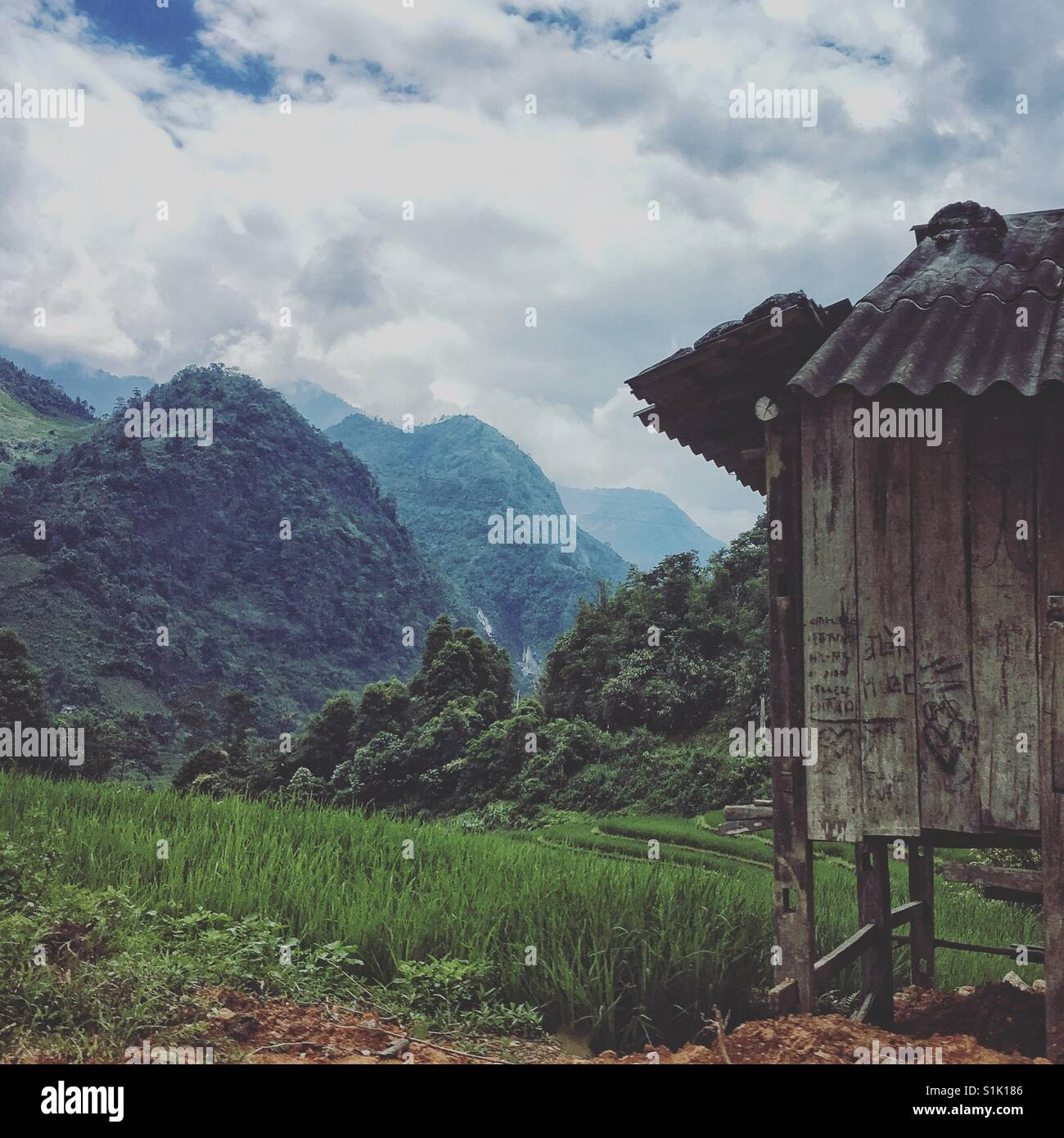 Rice farmer's hut amongst the paddy fields in the Vietnamese mountains near Sapa Stock Photo