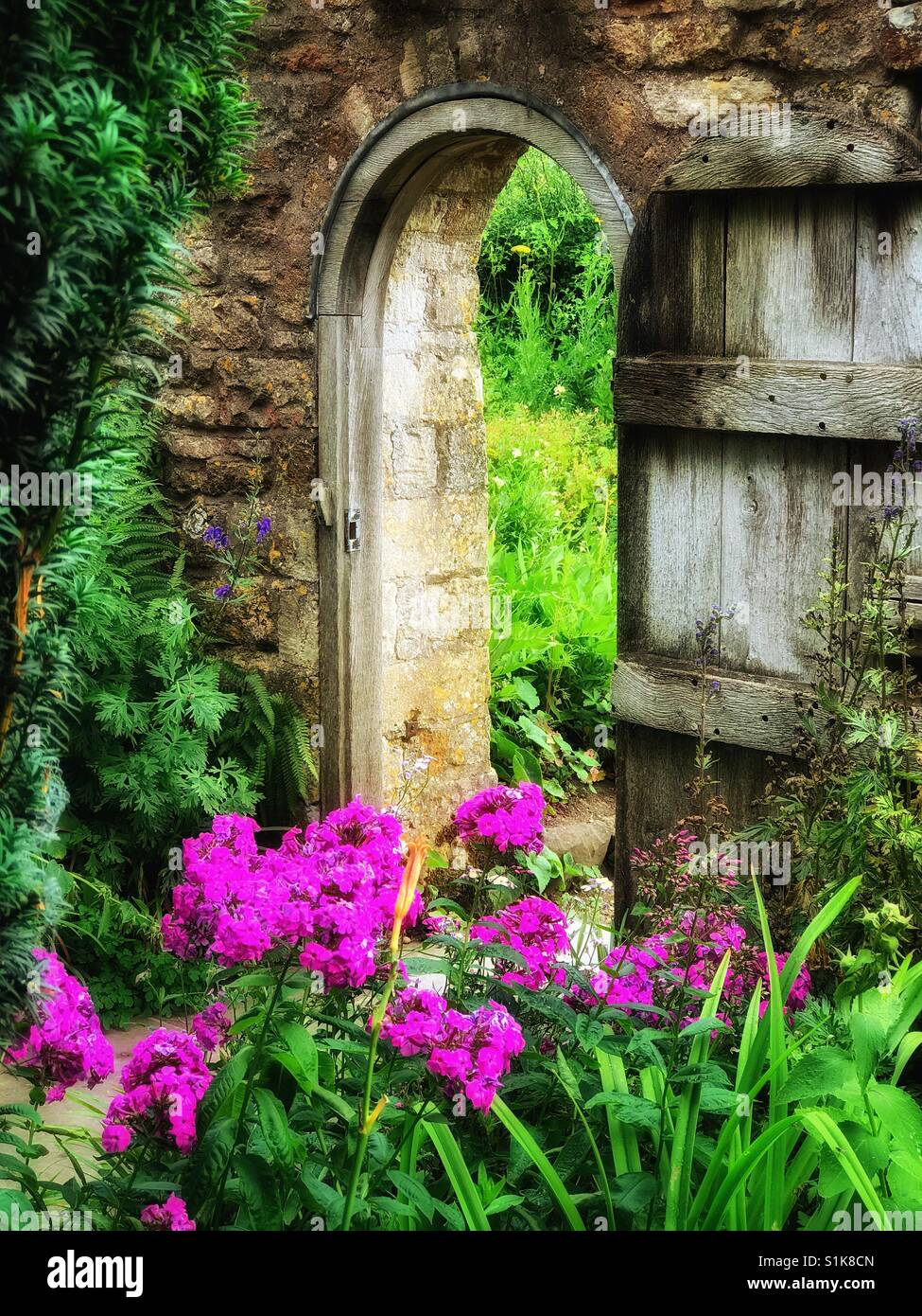 A View Of An English Country Garden Archway With Open Wooden Door. Itu0027s  Summer So The Flowers Are Colourful And In Full Bloom.
