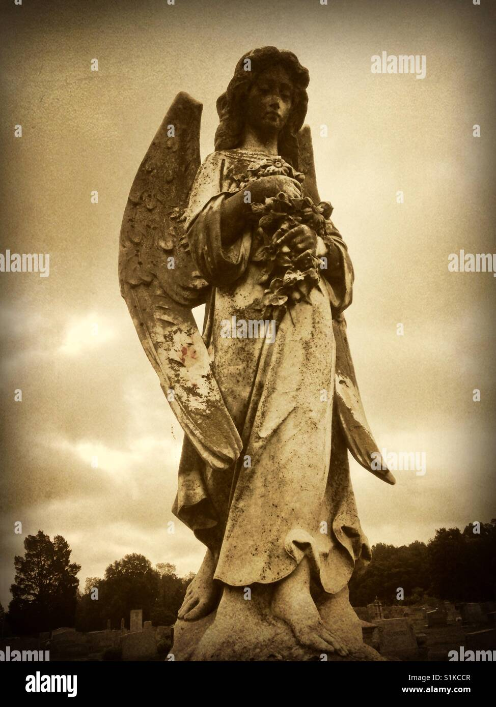 Angel with flower bouquet- grave marker in North Carolina - Stock Image