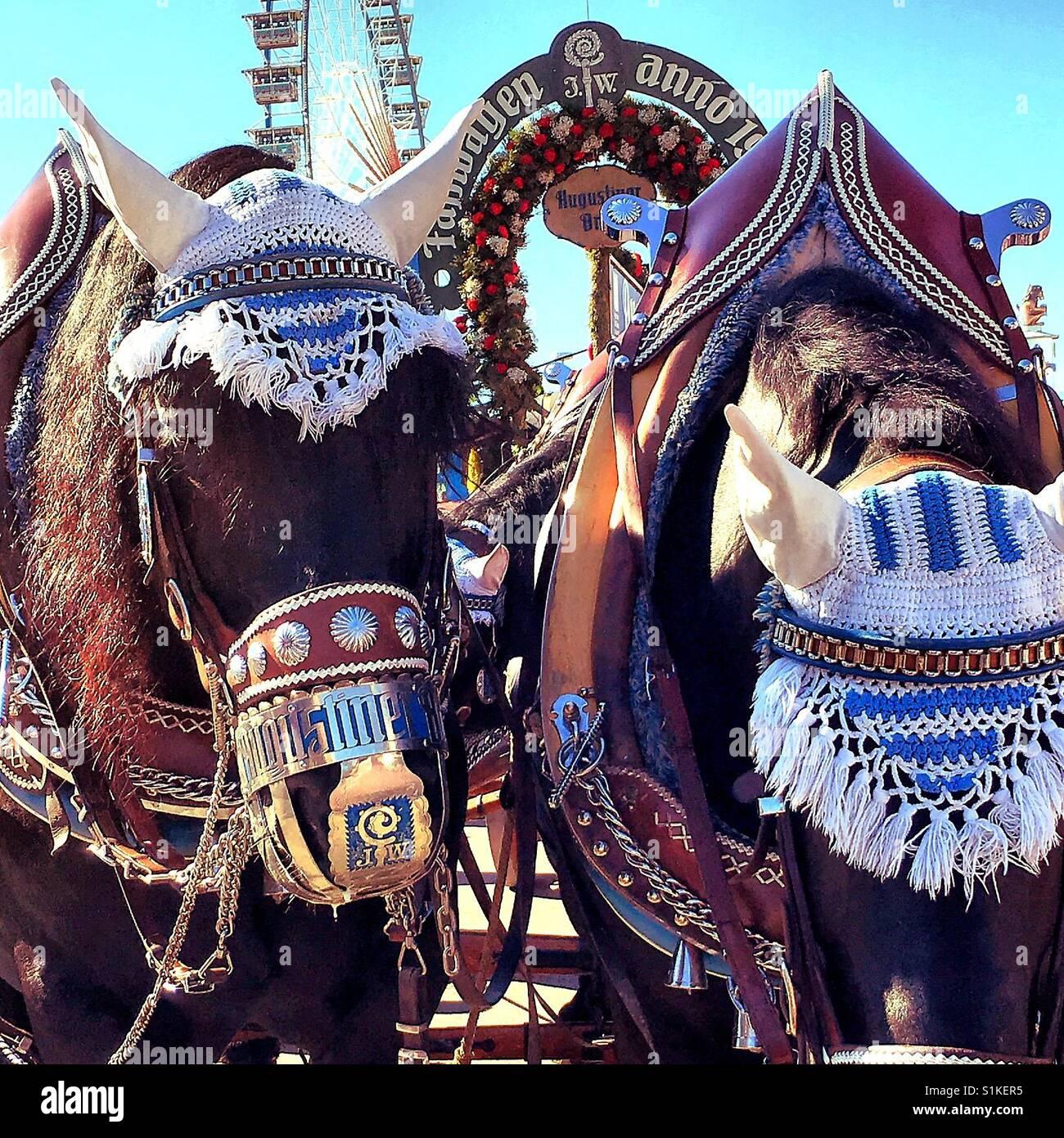 Horses at the Oktoberfest - Stock Image