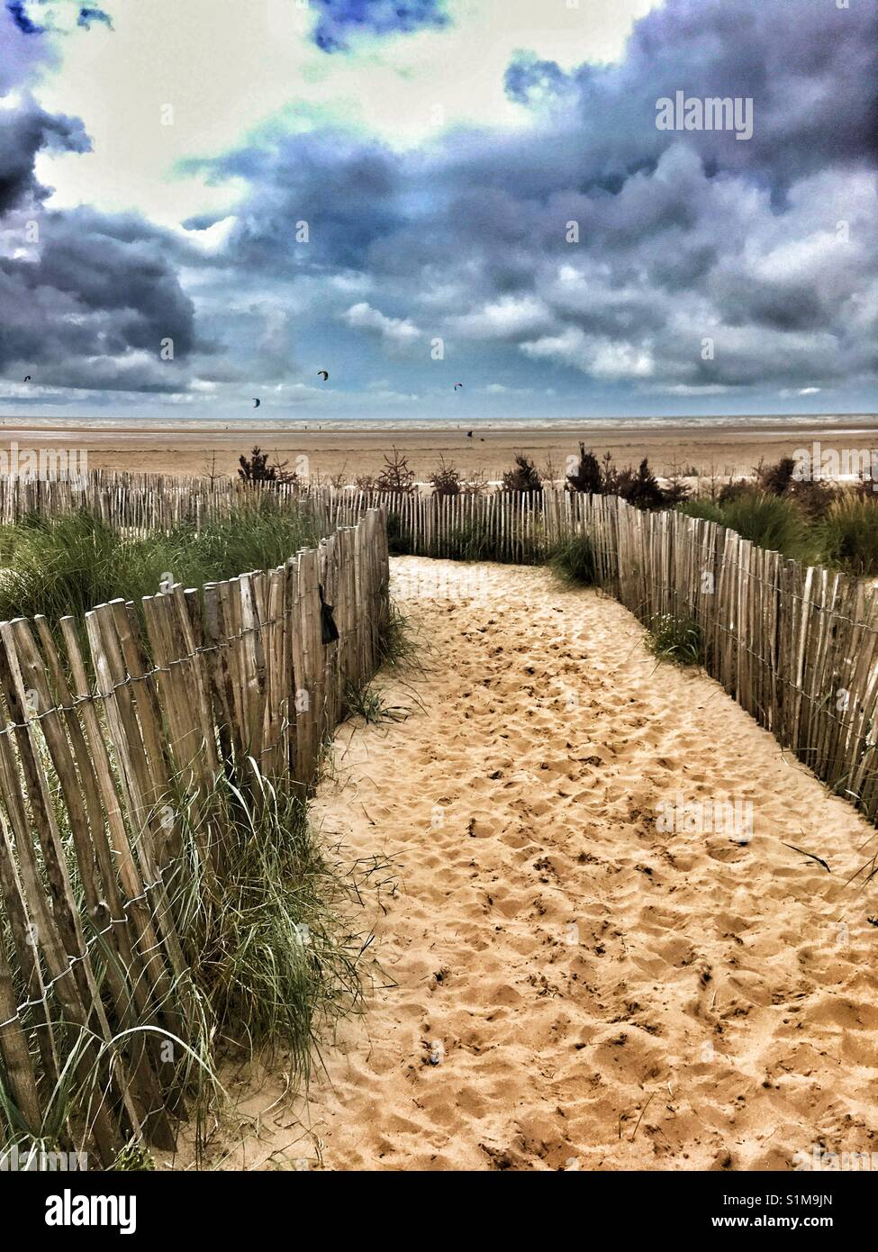 Pathway to the beach - Stock Image