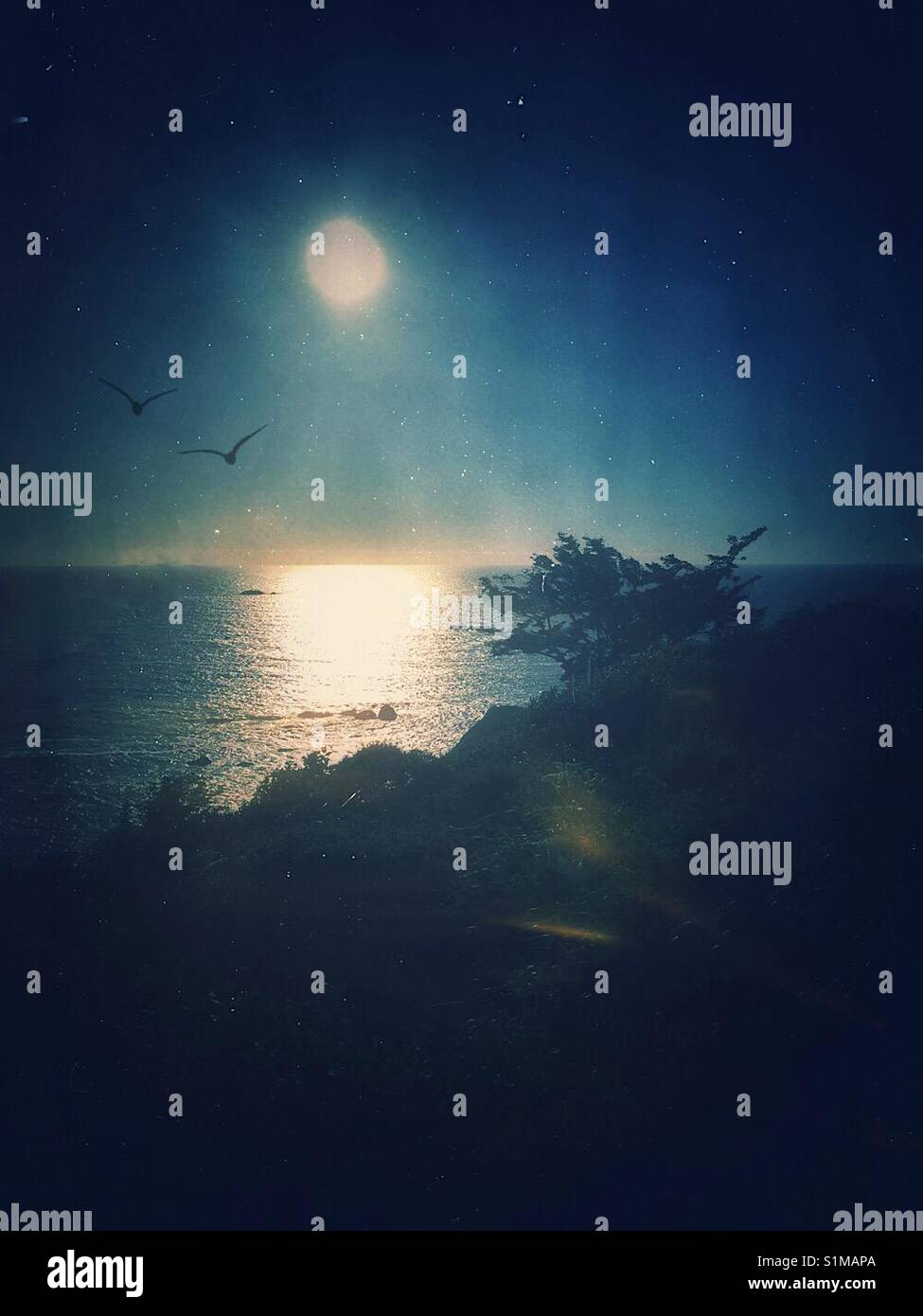 Evening over the Pacific - Stock Image