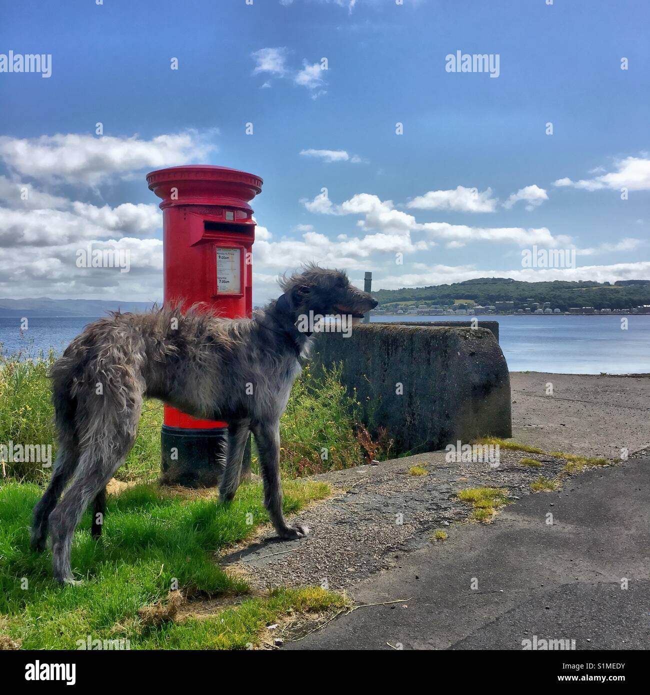 Posting a Letter on a Scottish Island - Stock Image