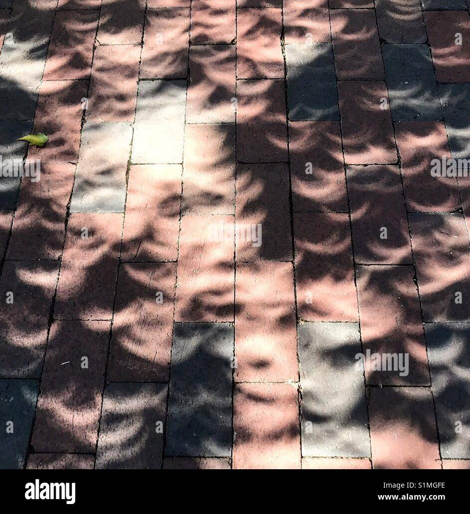 Eclipse Shadows 🌘 - Stock Image