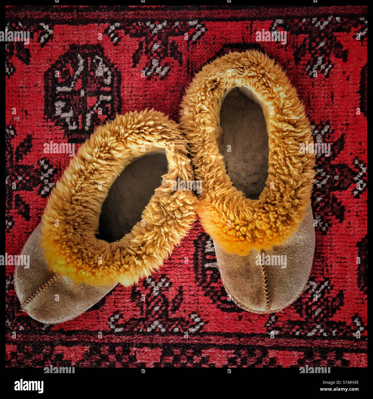Wool slippers on carpet. - Stock Image