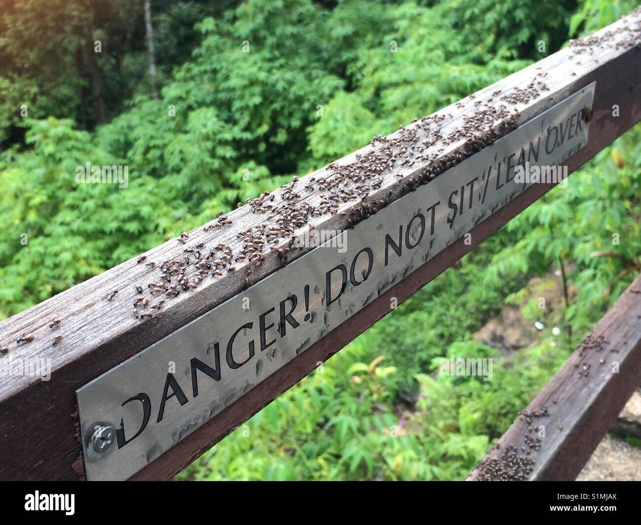 Danger! Do not sit / lean over - Stock Image