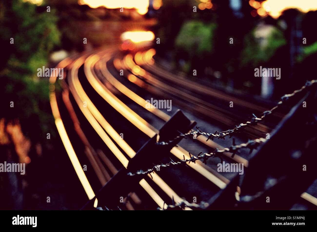 Train tracks at sunset Stock Photo