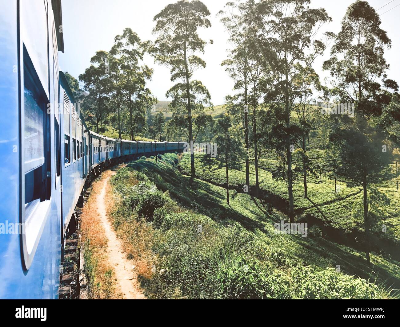 Way to Ella - Srilanka - Stock Image