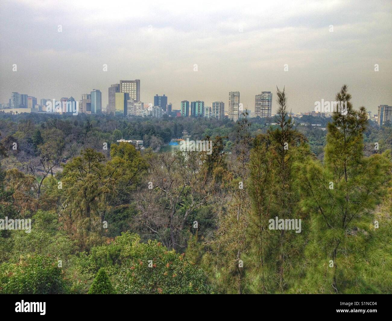 The skyline of Mexico city seen from the castle of Chapultepec. - Stock Image
